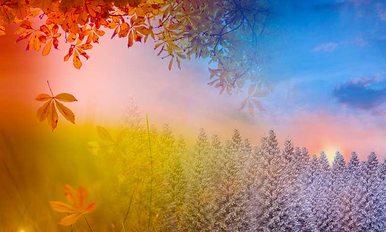 What causes the seasons to change on earth