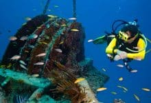How do undersea internet cables work
