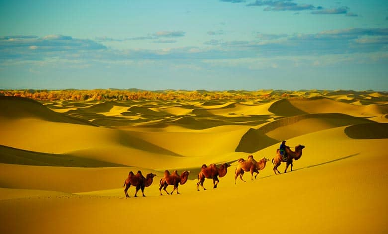 Why does the sahara desert exist